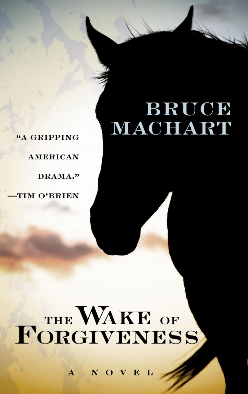 The Wake of Forgiveness, Large Print Edition